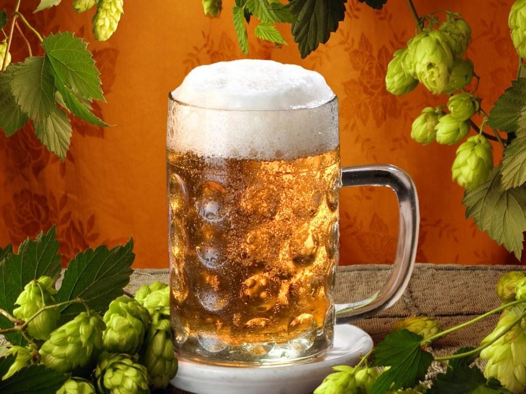 Razlozi zbog kojih treba piti pivo Banjaluka.com
