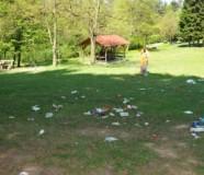Trežnjik smeće