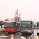 busevi