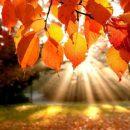 jesen-sunce1