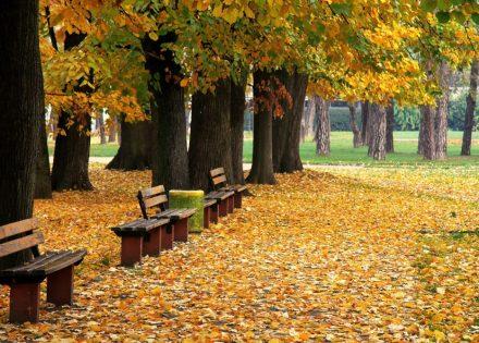jesen-banjaluka