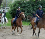 Policajci na konjima