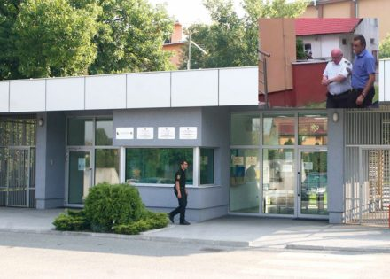 kulenovića