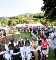 Dani-Vrbasa-festival