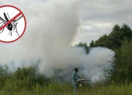 komarci