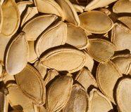 sjemenke