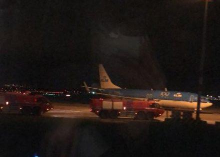 aviona